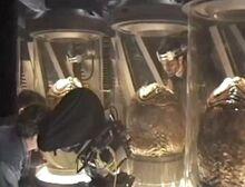 Cryo-stasis tubes3