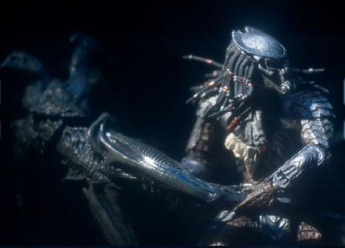 Celtic Predator Throws Alien