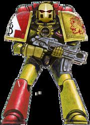 Golden Reclaimers Legionary Mk VI 2