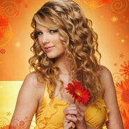 Taylor-Swift-Tickets