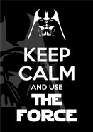 Keep calm and use the force by canha-d5obofp