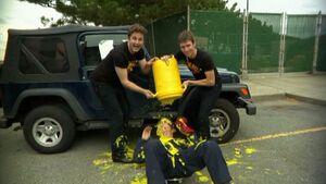 312-mustard2