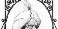 Sri Sansa