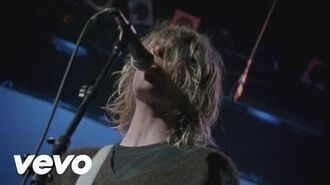 Nirvana - Territorial Pissings (Live At The Paramount 1991)-0