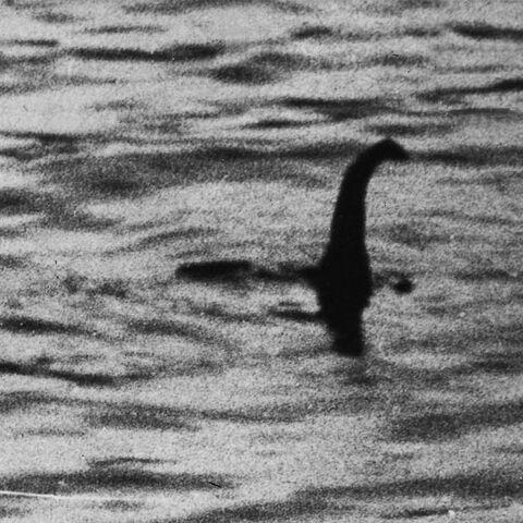 File:Loch ness monster.jpg