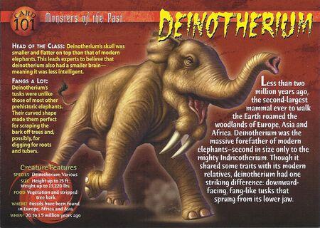 Deinotherium front