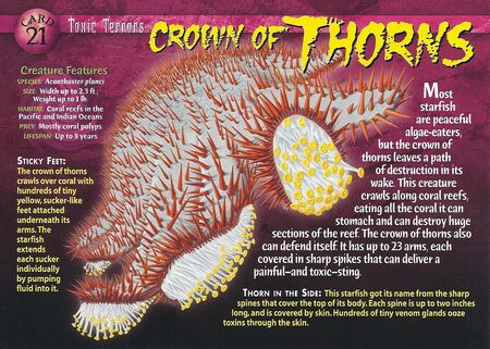 Crown of Thorns front