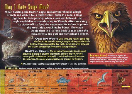 Haast's Eagle back