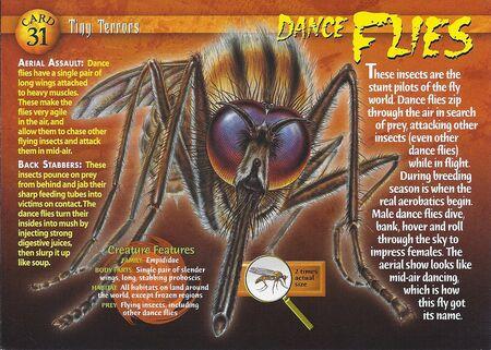 Dance Flies front