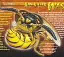 Bee-Killer Wasp