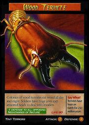 Wood Termite