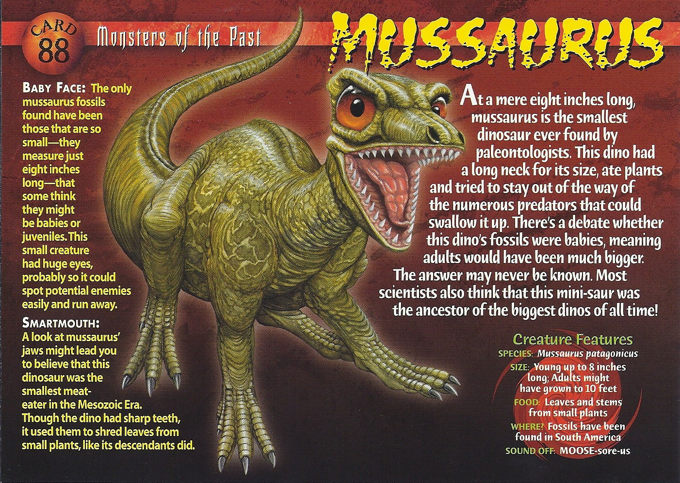 mussaurus frontjpg