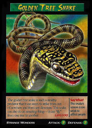 Golden Tree Snake
