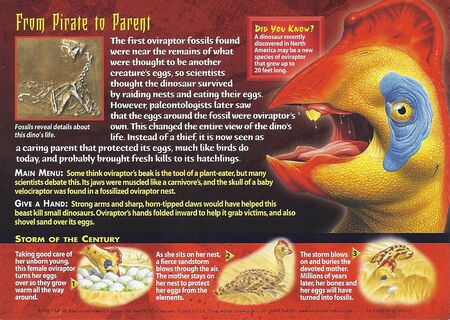 Oviraptor back