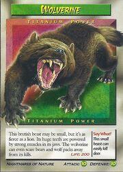 Wolverine-Titanium