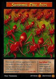 Swarming Fire Ants