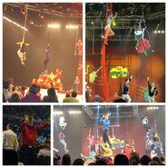 2010-12-02-Wiggles-Concert-2010-1024x1024