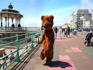 TeddyBear,TeddyBear,TurnAround-2013