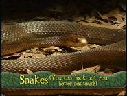Snakes(YouCanLookButYouBetterNotTouch)-SongTitle
