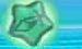 KRtDL Sword Ability Star