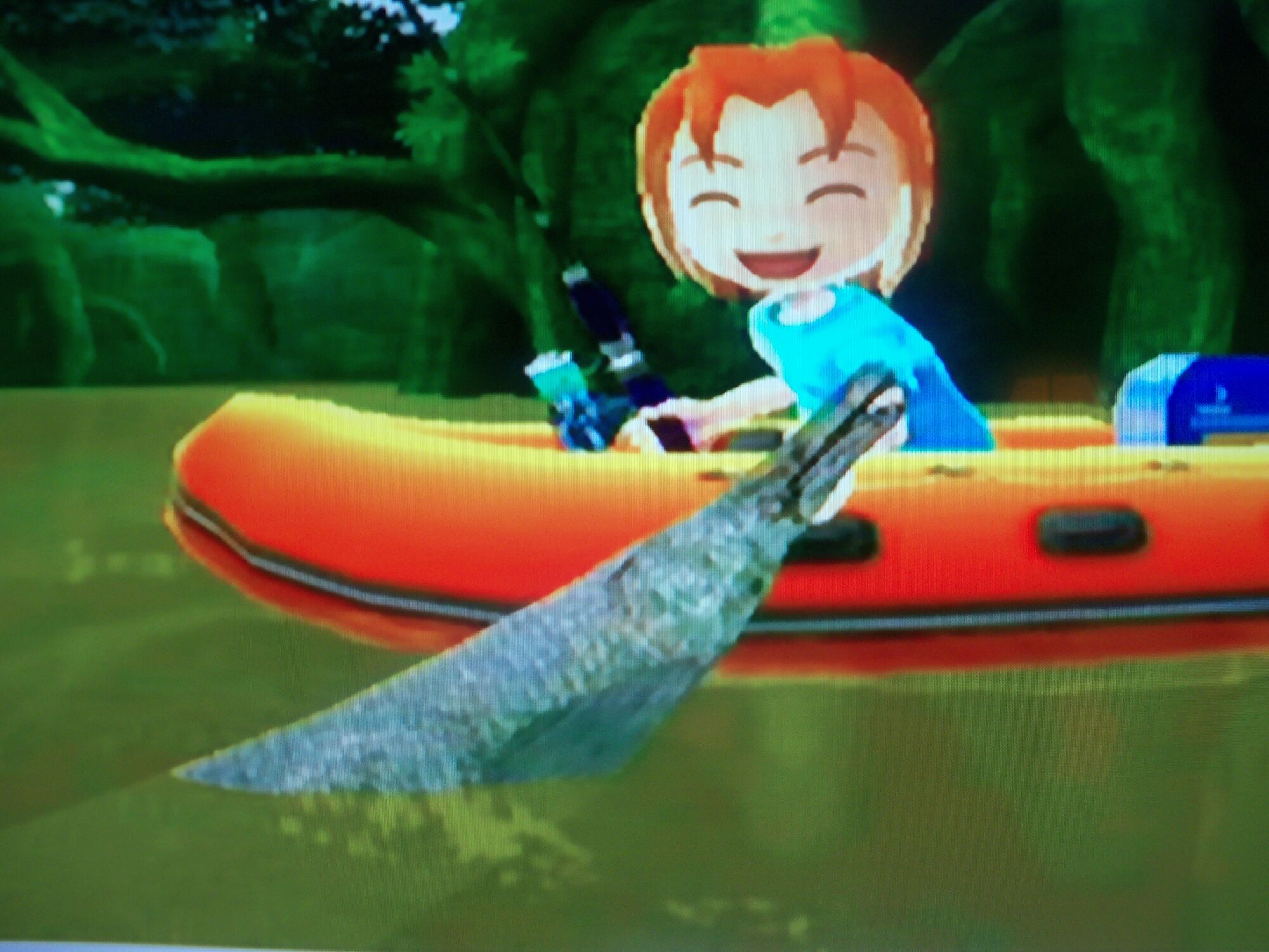 Category Money Makers Wii Fishing Resort Wiki Fandom