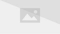 Gay Navy