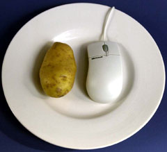 File:Potatoe.jpg