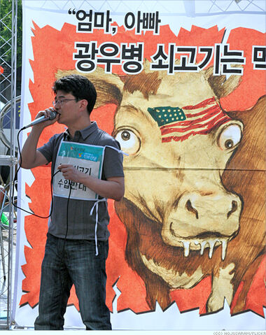 File:Southkoreamadcow.jpg