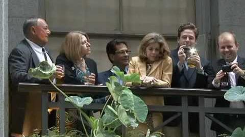 Wall Street Mocks Protesters By Drinking Champagne 2011