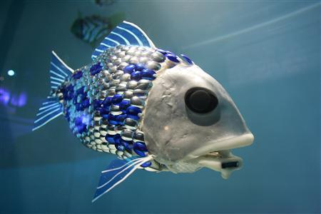 File:RobotFish.jpeg