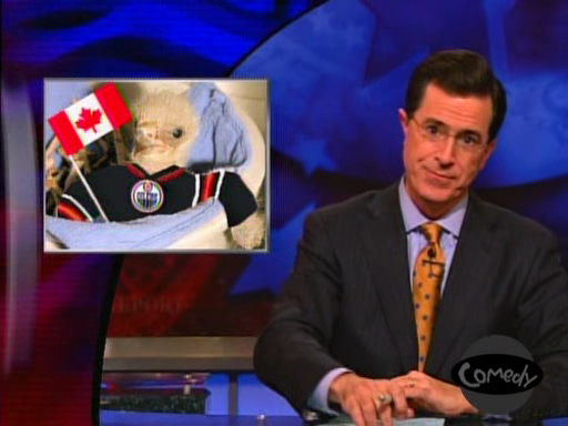File:Oilers on colbert.jpg