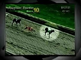 Sport Report Dog Racing