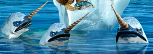 Narwhals1