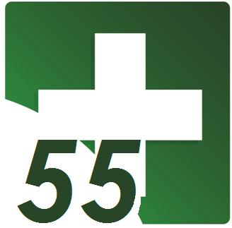 File:Logo of 55 Plus.png