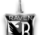 Raven Industries, GmbH