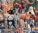 Animalia Wiki