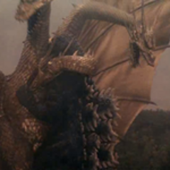 <b>King Ghidorah strangles Godzilla with his middle head, which CenturyGhido also did to ReginaGoji.</b>