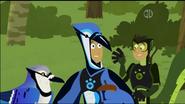 Blue Jay to Acorn
