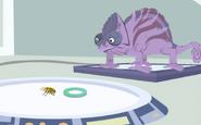 Chameleon-Wild Kratts