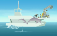 Dolphin.wildkratts.0003