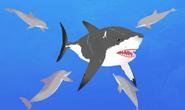 Dolphin.wildkratts.shark.0027