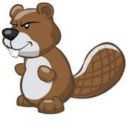 Beaverpet