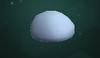 Snow Clump (Large)