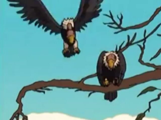 File:Eager Vultures.JPG