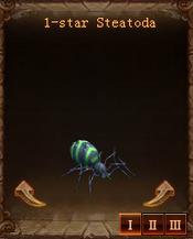 Pets Staetoda Star1