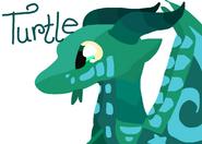 Prince Turtle