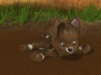 02 Muddy Buster