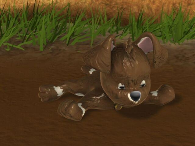 File:02 Muddy Buster.jpg