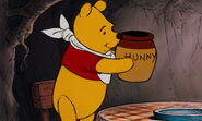 The Many Adventures of Winnie the Pooh 2829928329