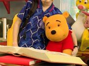 The Book of Pooh - Christopher Robin with Pooh
